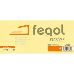 fegol notes_2013
